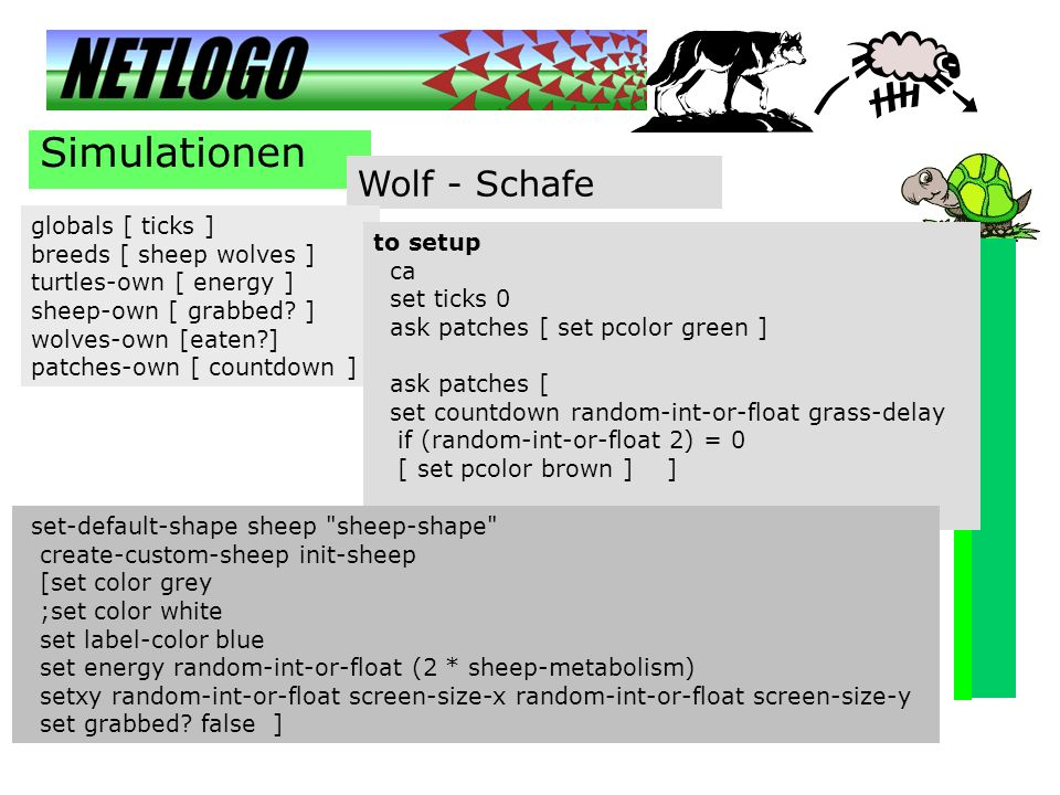 Simulationen Wolf - Schafe globals [ ticks ] breeds [ sheep wolves ]